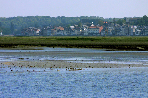 Photographe of the baie de Somme
